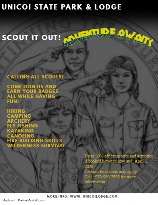 scout flyer