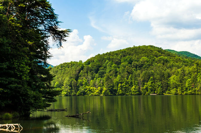Unicoi Blog Header March